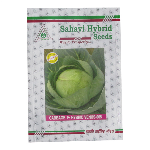 Cabbage F1 Hybrid Venus 065