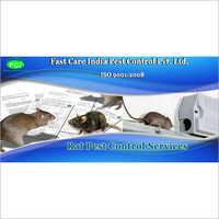 Rat Pest Control Service