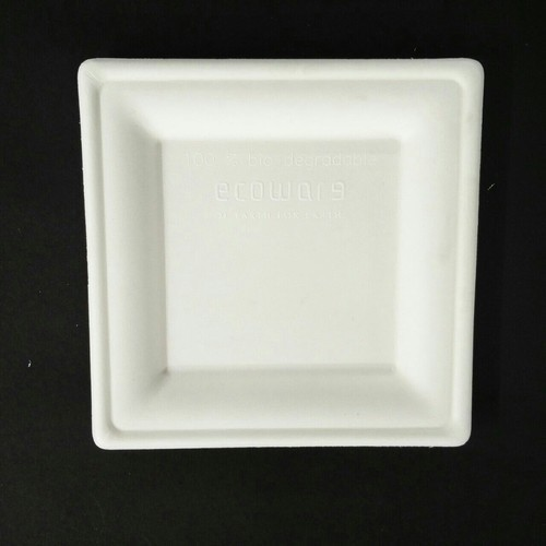 Ecoware 8 Inch Square Plate