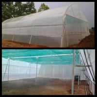 Poly Green House