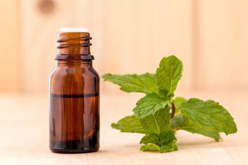 Mint Extract liquid