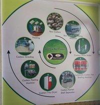 Cashew Nut Process Plant