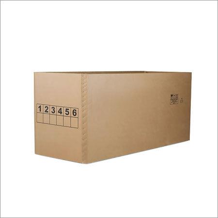 Ficus AAA Box