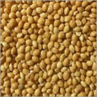 SCO, Yellow Millet, UA