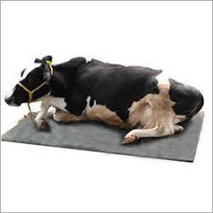 Cow Rubber Sheet