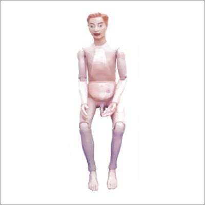 High Quality Nurse Training Doll (Male) Unisex