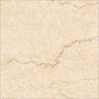 Platinum Vitrified Tiles