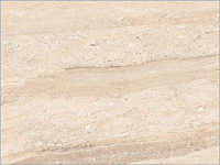 Elegant Dyno Glazed Vitrified Tiles