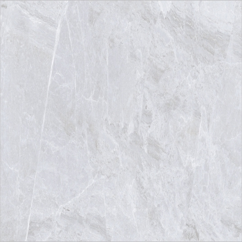 Tracks Plata Polished Glazed Vitrified Tiles