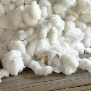 Raw Cotton Waste
