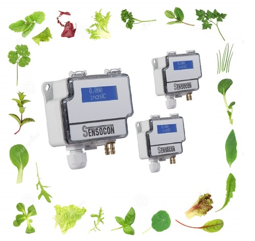 Sensocon USA Differential Pressure Transmitter Series DPT1-R8 - Range  0 - 12.7 mmWC