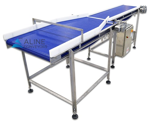 Transfer Modular Belt conveyors