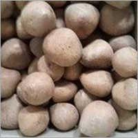 Dry Coconut Copra