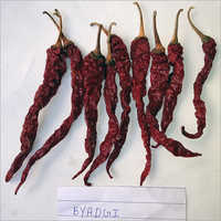 Byadgi chillies