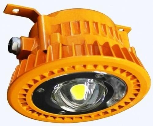 40w Wellglass Flameproof Lights