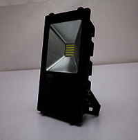 LED Flood Light 30W Bottom Choke