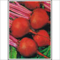 Lalita - Beet Root (Hybrid) Seeds
