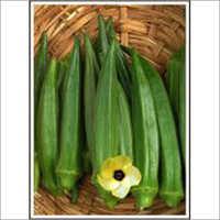 Panchwati - Bhindi (Okra) (Open Pollinated)