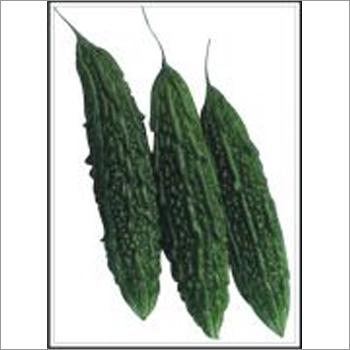 Veena - Bittergourd (Hybrid) Seeds