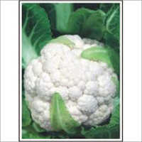 Aghani - Cauliflower (Open Pollinated)  Seeds