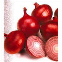 Lal Surakh - Onion (Super Selection)  Seeds