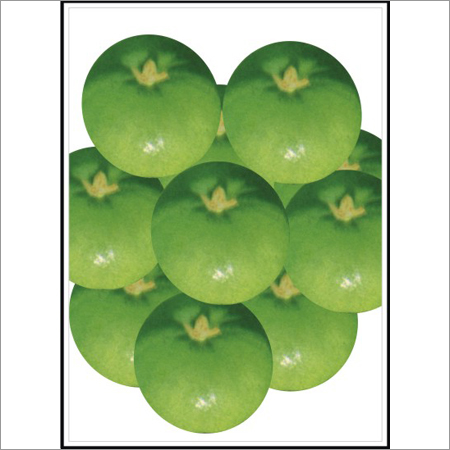 Ludhiana Special - Round Gourd (Tinda) (Open Pollinated)  Seeds