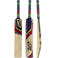 Kashmir willow cricket bat for leather ball