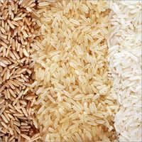 Rice XL