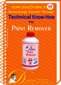 Paint Remover technical knowHow report