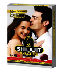 Shilajit Power