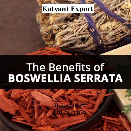 Boswellia Oil Serrata