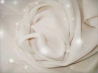 Diamond Star Point Chiffon Fabrics