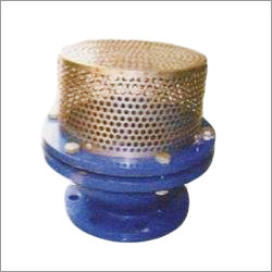 CI Flanged Foot Valve