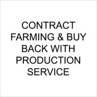 Contract Farming & Buy Back With Production Service