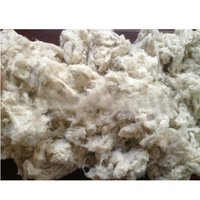 Card Fly Cotton Waste
