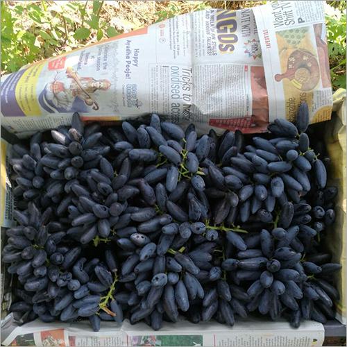 Black Graps