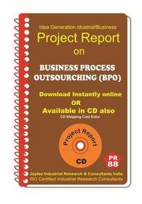 Business Process Outsourcing (BPO) establishment eBook