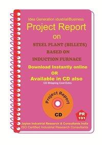 Steel Plant (Billets )based on Induction Furnace PR ebook