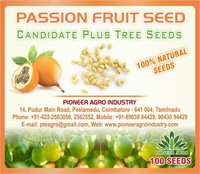 Passion Fruit Tree Seed