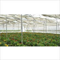 Agriculture Greenhouse Structure