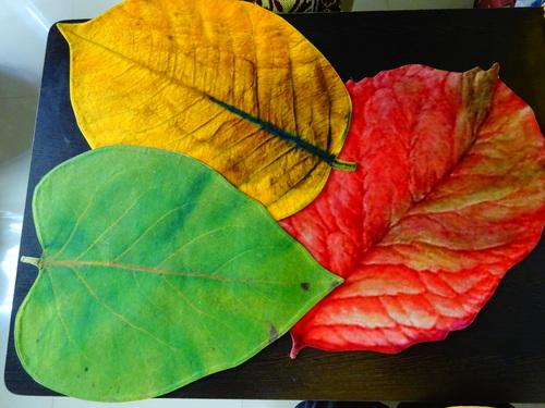 Table Leaf Mat