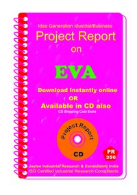 EVA manufacturing Project Report eBook