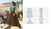 Designer Indian Gown