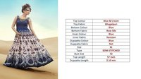 fancy Printed Gown Dresses