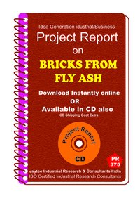 Bricks From Fly Ash manufacturing Project Report eBook