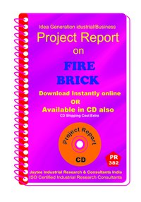 Fire Brick establishment project report eBook