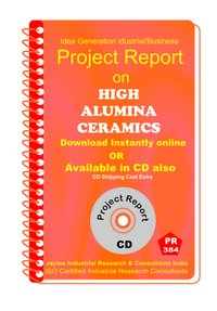 High Alumina Ceramics manufacturing eBook