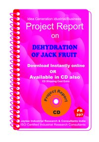 Dehydration of Jack Fruit manufacturing Project Report eBook