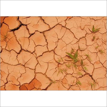 Earth Soil Attar (Mitti Attar)