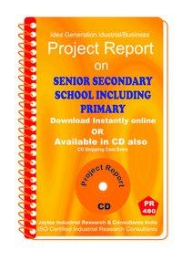 Senior Secondary School Including Primary Establishment eBook